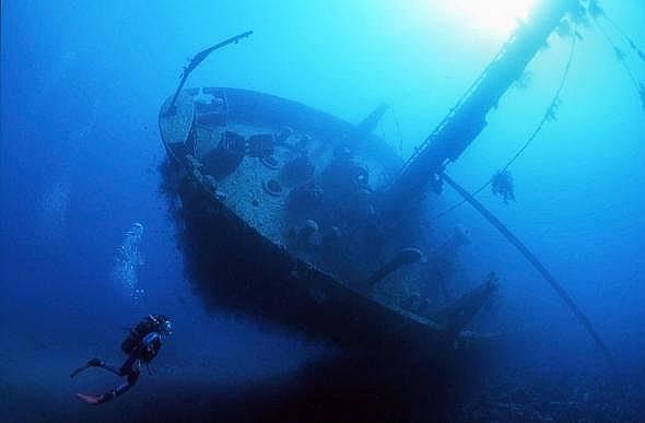 Гмуркачите могат да изследват и алтернативни места: както кораби, така и самолет, принадлежал на йорданските военновъздушни сили и потопен нарочно за...