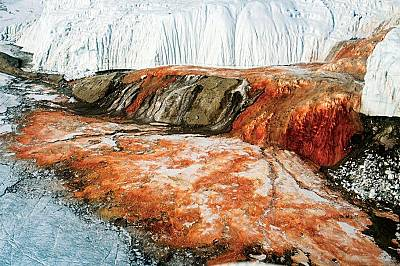 Какво се крие зад загадъчните Кървави водопади на Антарктида