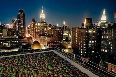 Супербурята Санди бе сигнал за Ню Йорк и други градове да започнат да планират съобразно климатичните промени: да укрепяват сградите и инфраструктурат...