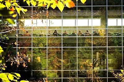 Естествена светлина облива училището Manassas Park Elementary във Вирджиния. Според проучване постиженията на учениците в класните стаи с повече естес...