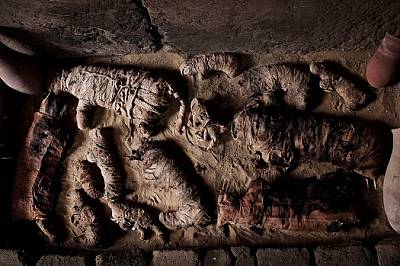 В Египет откриха гробници с мумифицирани животни