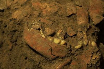 ДНК на жена, живяла преди 7000 години, е открита в Индонезия
