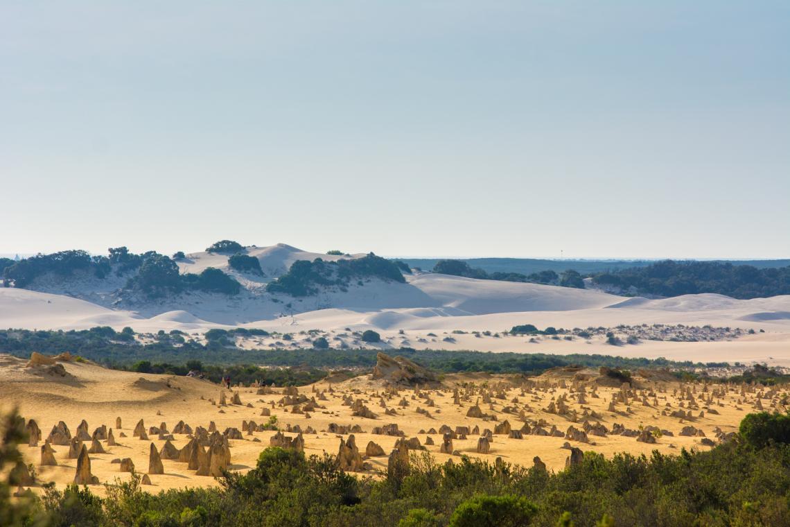 Гледка към белите дюни в Национален парк Намбунг, Западна Австралия.
