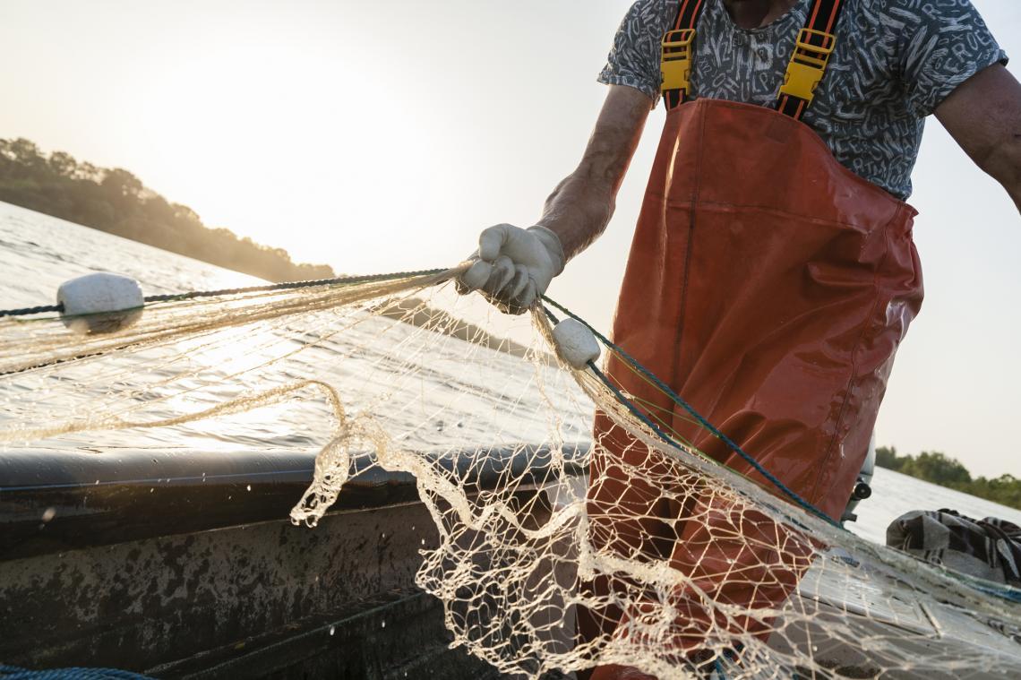Рибар с мрежа по време на риболов по река Дунав, 2019 г.