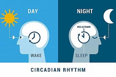 Кой издържа повече на безсъние - мъжете или жените?