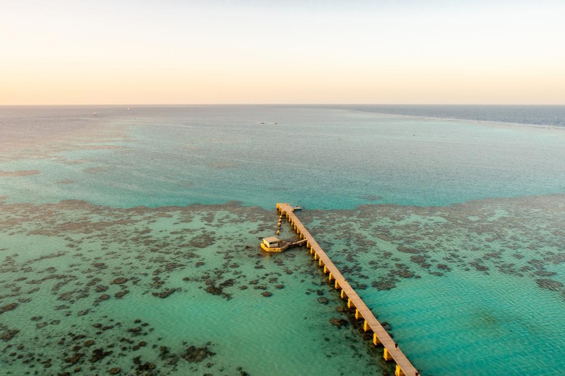 Национален парк Sanganeb Reef в Судан, Червено море. Снимка с илюстративна цел.