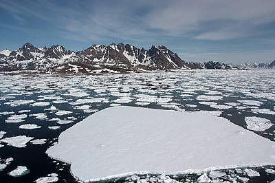 Скоростта на топене на световния лед се е увеличила драстично