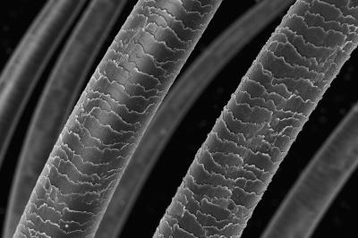 Учени създадоха квантов микроскоп, способен да види невидимото