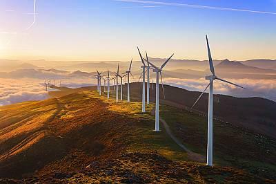 Световен ден за опазване на околната среда