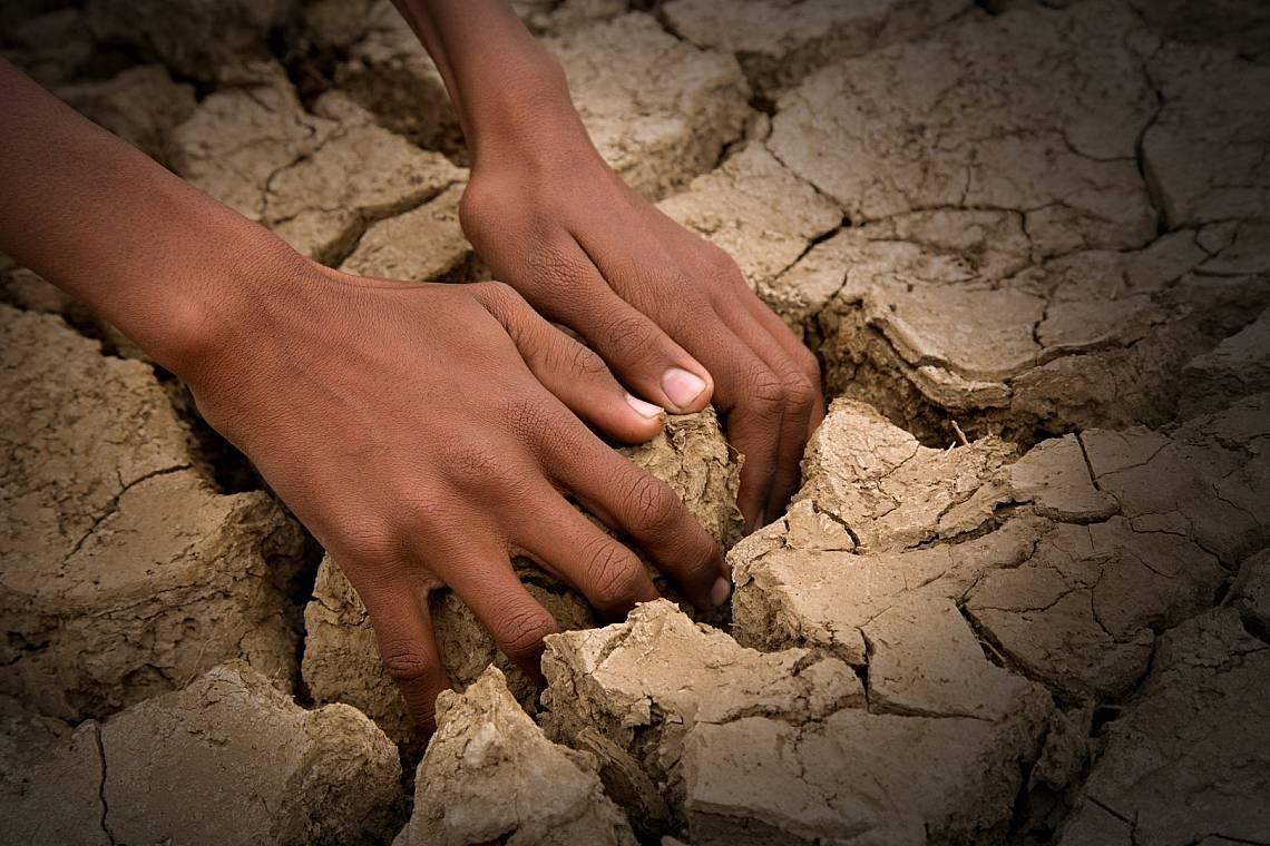 Целта на Световния ден за борба със сушата е да напомни на хората, че планетата ни се превръща в пустиня. Снимка: iStock