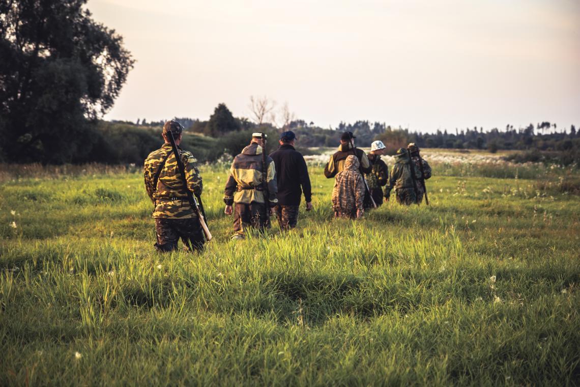 Група ловци минават през висока трева на селско поле при залез слънце по време на ловния сезон