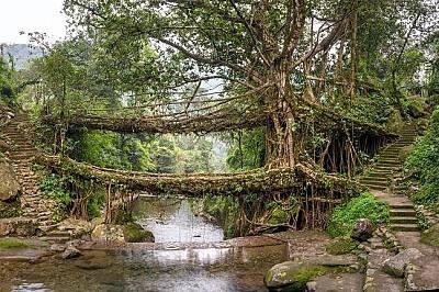 Най-забележителните мостове в света