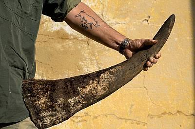 """Член на """"антибракониерския отряд""""Член на охранителния екип (показващ татуировката си на член на """"антибракониерския отряд"""") държи р..."""