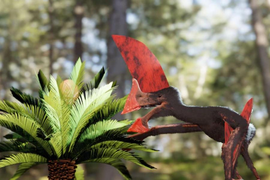Намереният скелет разкрива, че този вид птерозавър вероятно е можел да лети само на къси разстояния заради огромния гребен на главата си.
