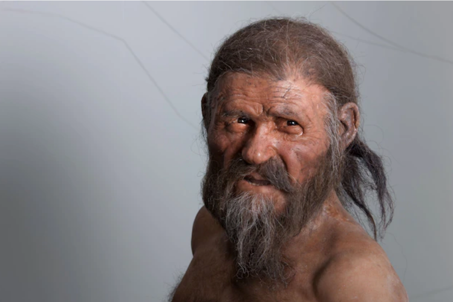 Реконструиран образ на Ледения човек Йоци, живял и починал в Алпите преди около 5200 години. Неговите естествено мумифицирани останки са открити от не...