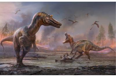 Къде в Европа има най-много вкаменелости на динозаври?