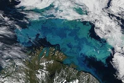 Климатичните промени ще променят цветовете на океана