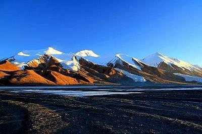ЦинхайЦинхай е най-високото плато в света. Местоположението му и минусовите температури са създали уникална екосистема от ендемични растителни видове...