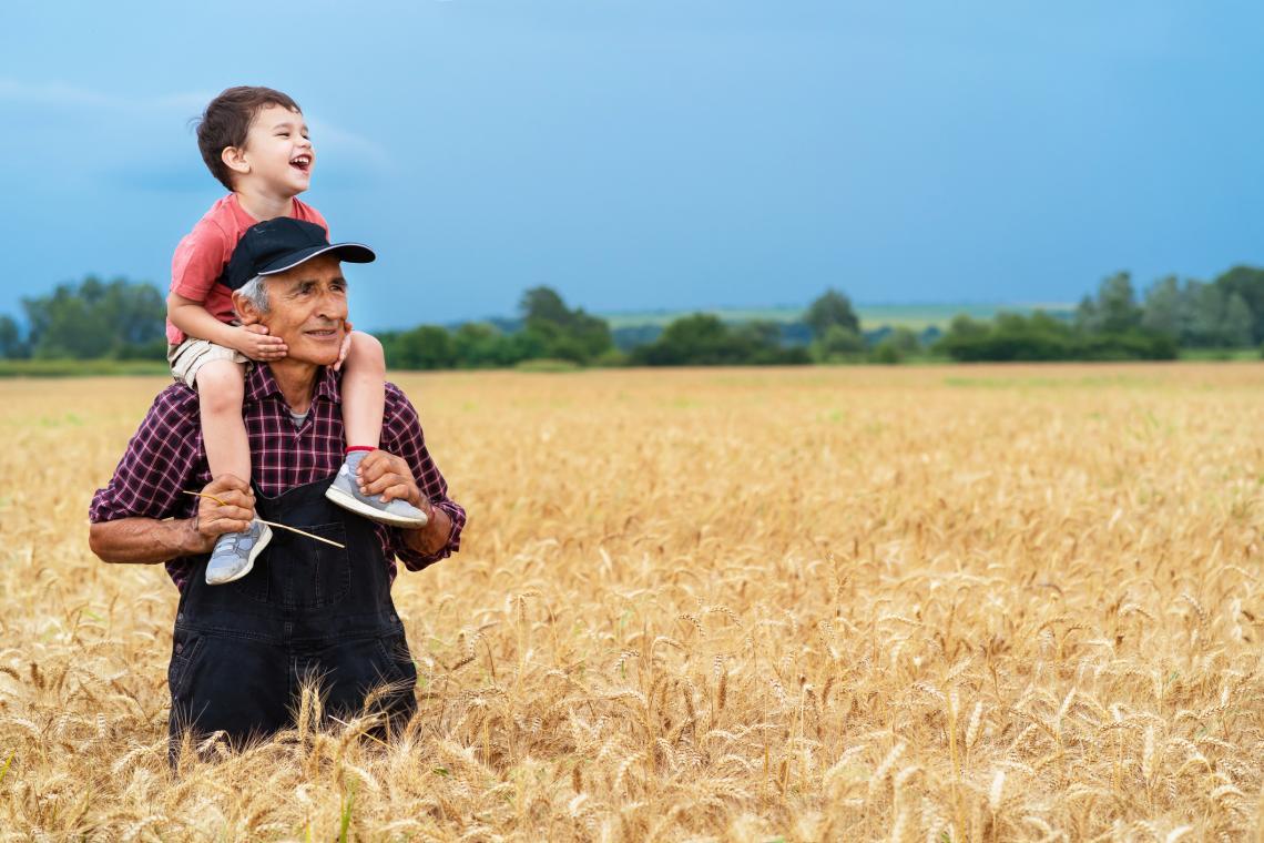 Земеделец показва на внука си житното поле.