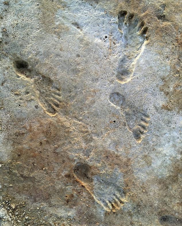 """Човешки отпечатъци, открити в Национален парк """"Уайт Сендс"""". Според ново проучване следите датират между 21 000 и 23 000 години назад във вре..."""