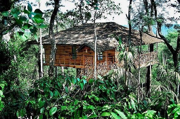Tranquil Resort, Керала, Индия Това 400 акрово имение е разположено сред плантации с кафе и подправки в северна Керала. Има само седем стаи и две къщи...