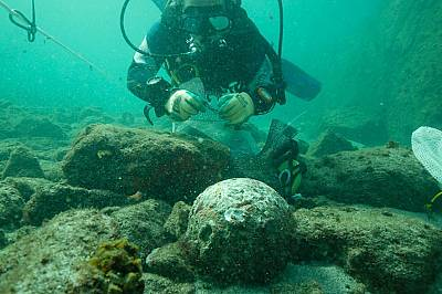 Оръдията най-вероятно са били извадени малко след потъването на кораба, но археолозите намират десетки гюлета на мястото на корабокрушението