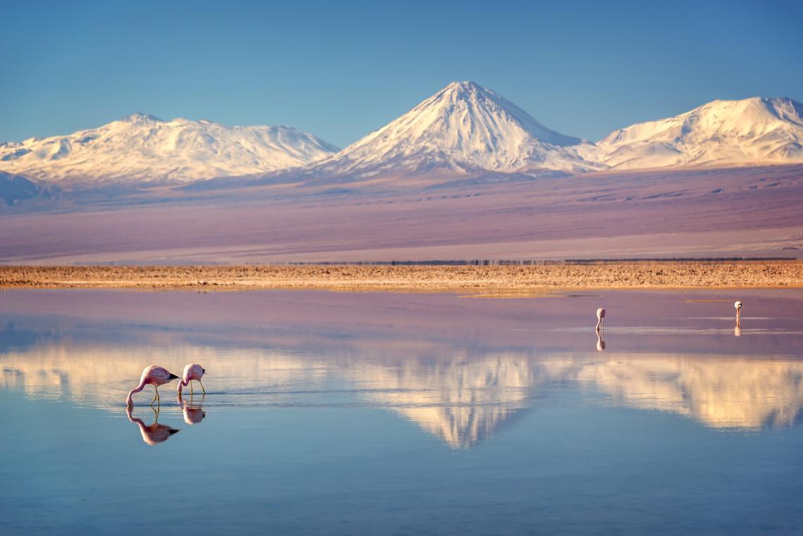 Солното поле Атакама, Чили.