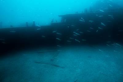 """Вече можете да се гмуркате до потъналия """"Титаник"""""""