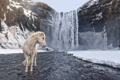 "Фотографът Е. Аренсибия работи при минусови температури, за да направи тази снимка.""Лошо време, студ, недобра светлина – никога не..."