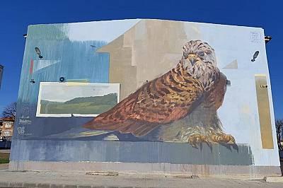 """Изрисуваха фасадата на СУ """"Доктор Петър Берон"""" в Свиленград със защитен вид"""