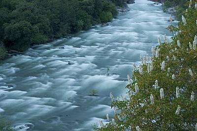 Река Туолъми, КалифорнияРека Туолъми извира от източните склонове на Сиера Невада и минава през високопланински ливади и живописни каньони. Поречието...